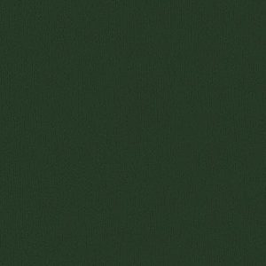 AP 30 Dark green